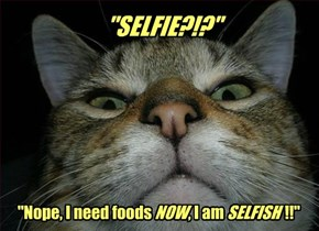 SELFIE?!? Nope, I need foods NOW, I am SELFISH!!