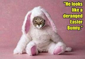 """""""He looks like a deranged Easter Bunny."""""""