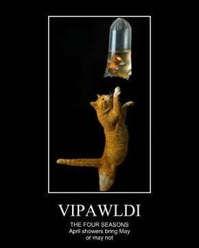 VIPAWLDI