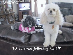 *FANKYOO*     LoL TO  ebrywun  following  US!! ♥