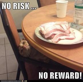 NO RISK ...  NO REWARD!