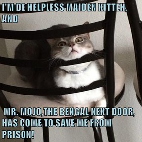 I'M DE HELPLESS MAIDEN KITTEH, AND   MR. MOJO,THE BENGAL NEXT DOOR, HAS COME TO SAVE ME FROM PRISON!