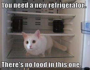 You need a new refrigerator..  There's no food in this one.