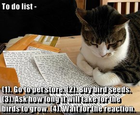 To do list -  (1). Go to pet store. (2). Buy bird seeds. (3). Ask how long it will take for the birds to grow. (4). Wait for the reaction.