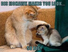 DIS MOHAWK MAKES YOU LOOK...  SO BIG!