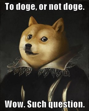 To doge, or not doge.  Wow. Such question.