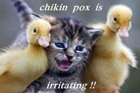 chikin  pox  is  irritating !!