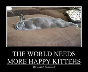 THE WORLD NEEDS MORE HAPPY KITTEHS