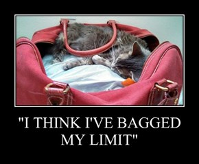 """I THINK I'VE BAGGED MY LIMIT"""