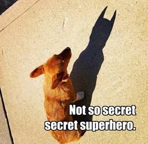 Not so secret secret superhero.