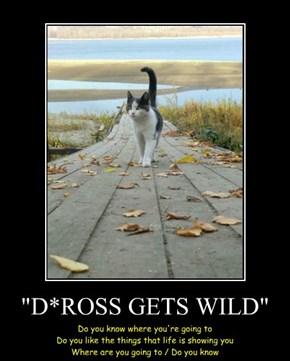 """""""D*ROSS GETS WILD"""""""