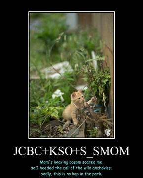 JCBC+KSO+S_SMOM