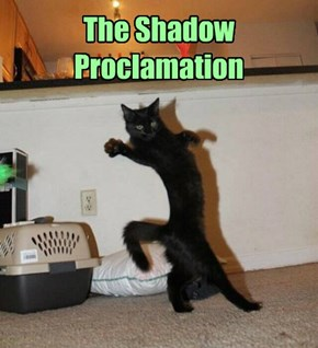 The Doctor's cat plays charades