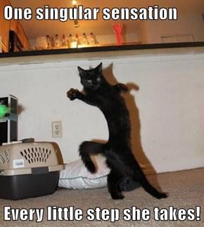 One singular sensation  Every little step she takes!