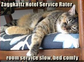 Zaggkattz Hotel Service Rater  room service slow, bed comfy