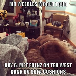 MR WEEBLES WORLD TOUR  DAY 6: MET FRENZ ON TEH WEST BANK OV SOFA CUSHIONS