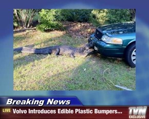Breaking News - Volvo Introduces Edible Plastic Bumpers...