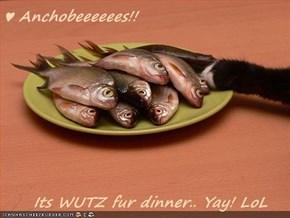 ♥ Anchobeeeeees!!       Its WUTZ fur dinner.. Yay! LoL