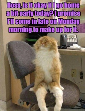 Boss, is it okay if I go home  a bit early today? I promise I'll come in late on Monday morning to make up for it.