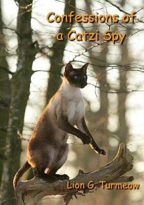 Confessions of  a Catzi Spy