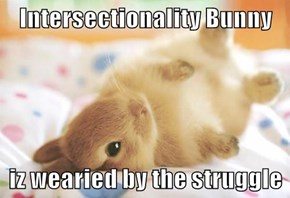 Intersectionality Bunny  iz wearied by the struggle