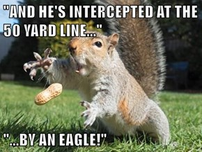 """""""AND HE'S INTERCEPTED AT THE 50 YARD LINE...""""  """"...BY AN EAGLE!"""""""