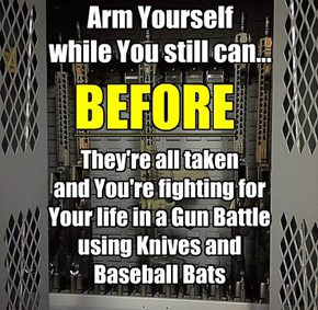 Arm Yourself While You still can before all the weapons are hoarded away and you're stuck fighting for your life and the lives of your family with knives and baseball bats.