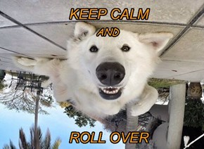 KEEP CALM AND ROLL OVER