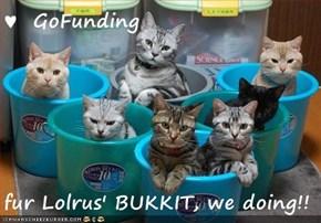 ♥  GoFunding  fur Lolrus' BUKKIT, we doing!!