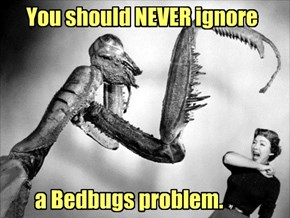 Not tonight, Honey. I have a headache & the Bedbug Itch.