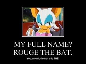 MY FULL NAME? ROUGE THE BAT.