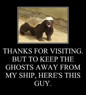 THANKS FOR VISITING. BUT TO KEEP THE GHOSTS AWAY FROM MY SHIP, HERE'S THIS GUY.