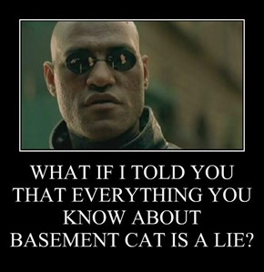 WHAT IF I TOLD YOU THAT EVERYTHING YOU KNOW ABOUT BASEMENT CAT IS A LIE?