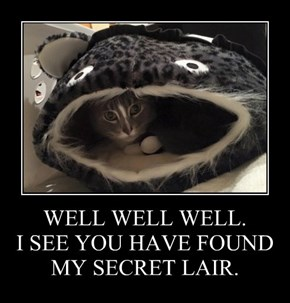 WELL WELL WELL. I SEE YOU HAVE FOUND MY SECRET LAIR.