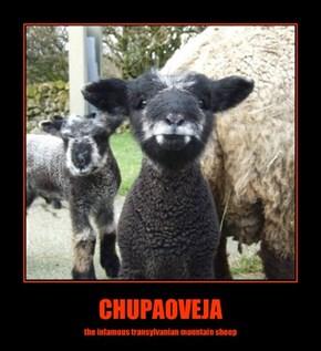 CHUPAOVEJA
