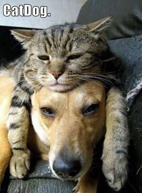 CatDog.