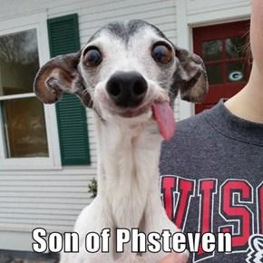 Son of Phsteven
