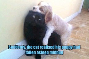 Suddenly, the cat realised his puppy had fallen asleep midhug