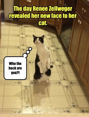 Even her cat didn't recognize her!