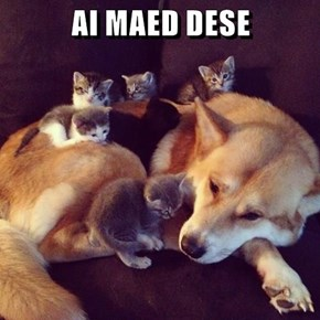 AI MAED DESE