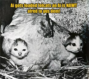 Ai gots loaded lolcats an Ai is NAWT afred to yus dem!