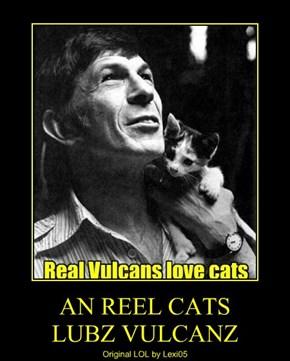 AN REEL CATS       LUBZ VULCANZ