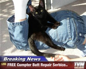 Breaking News - FREE Cumpter Butt Repair Serbice..