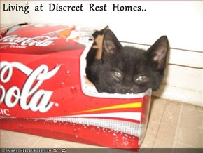 Living  at  Discreet  Rest  Homes..