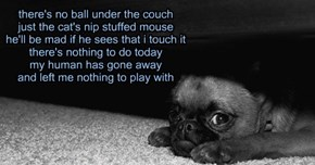 No ball under the couch