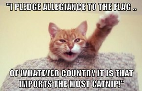 """I PLEDGE ALLEGIANCE TO THE FLAG ..  OF WHATEVER COUNTRY IT IS THAT IMPORTS THE MOST CATNIP!"""