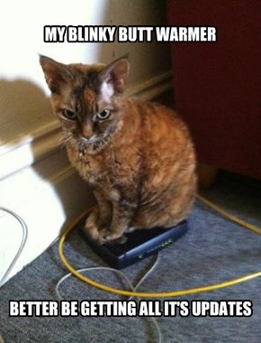 Router Kitty Stands Firm On Firmware