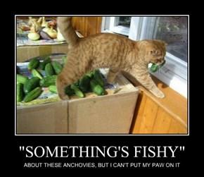 """SOMETHING'S FISHY"""