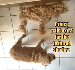 Prince paid extra for the textured shadow.