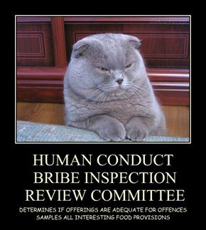 HUMAN CONDUCT  BRIBE INSPECTION   REVIEW COMMITTEE